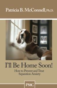 MR Home Soon